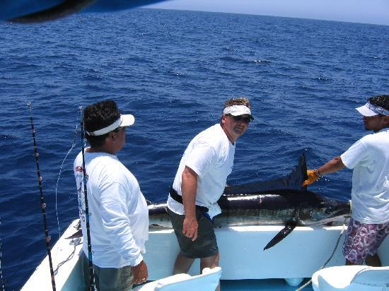 Ian w a nice rooster fish picture of hotel punta for Rooster fish cabo