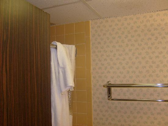 Ramada Inn at Bradley International Airport: bathroom