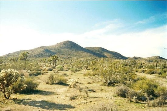 Yucca Valley, CA - um, it was fun at times :)