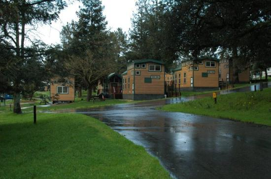 San Francisco North / Petaluma KOA: These cabins are awesome inside!  We met the owners this morning & they gave us a tour!