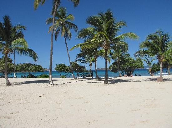 Antilles At Sapphire Beach Resort: beach at Sapphire