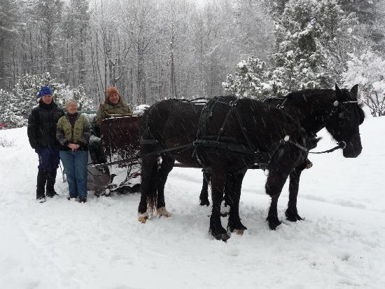 Darby Field Inn: Sleigh Ride
