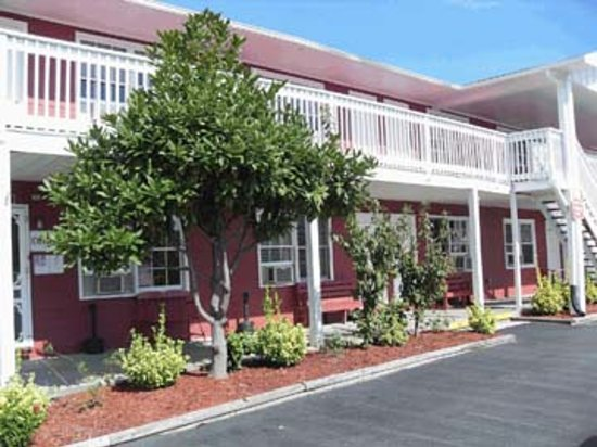 Photo of Burgundy Inn Ocean City