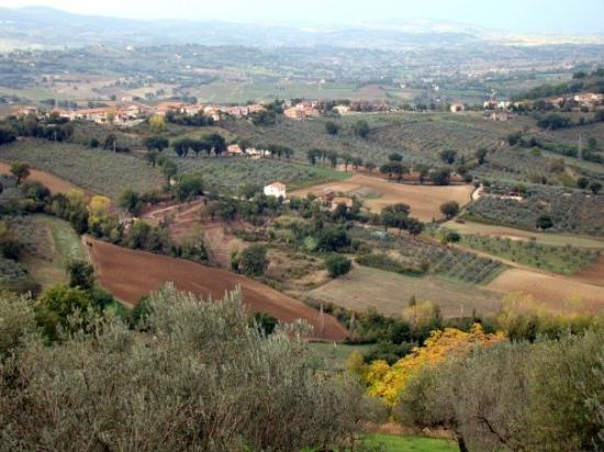 Views into the valley below Montefalco...
