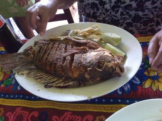 Siguatepeque, Honduras : Fish Dinner