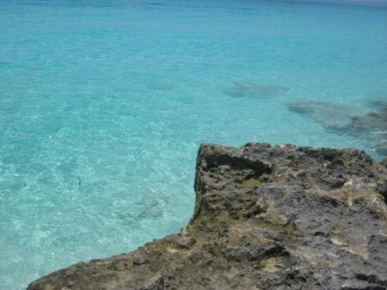 Bimini Photo