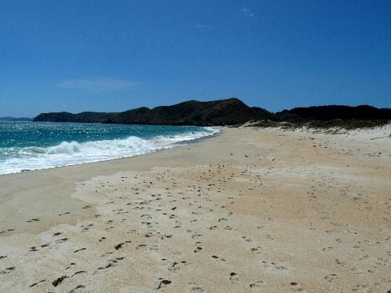 Te Kouma Bed and Breakfast: Just another beach!
