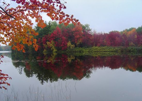 Lewiston, ME: taken @ the camp in No Name Pond by Margie Laverdiere