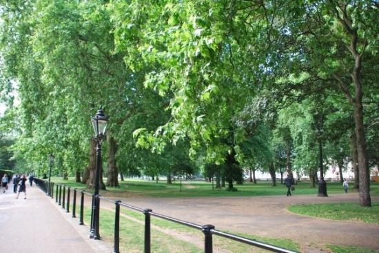 Images of Green Park, London - Attraction Pictures - TripAdvisor