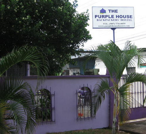 ‪The Purple House International Backpackers Hostel‬