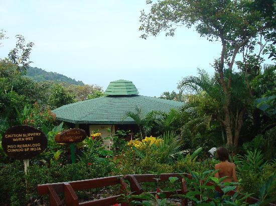 Tulemar Bungalows & Villas: The lush gardens around the villas