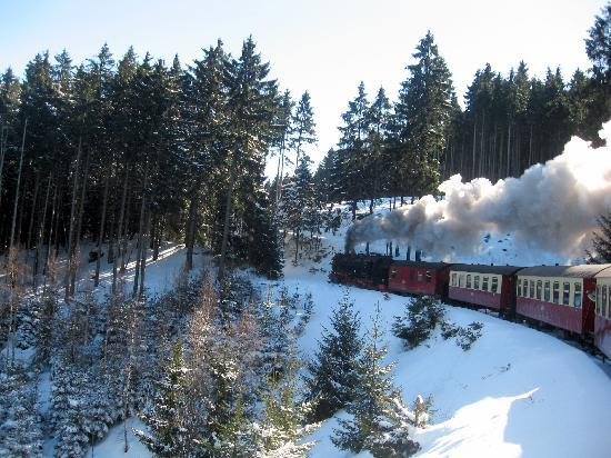 Kaufmannshof Ferienwohnungen: A steam train ride up Mt. Brocken is a must!