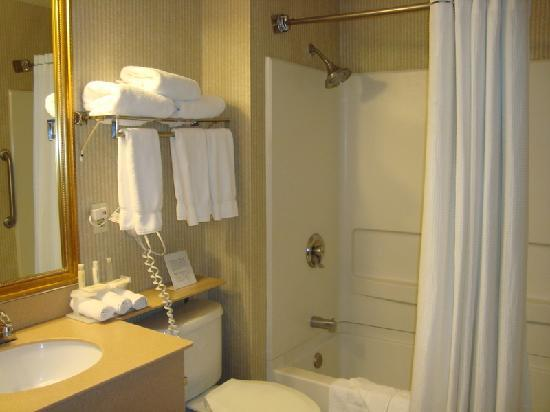 Holiday Inn Express: bathroom