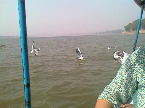 Allahabad attractions
