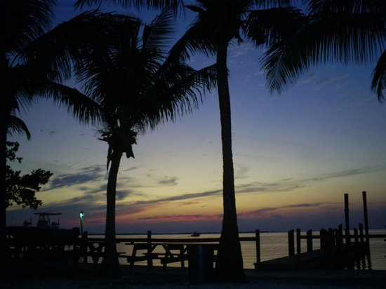 Key Largo-bild