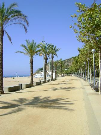 Calella Images - Vacation Pictures of Calella, Province of Barcelona ...