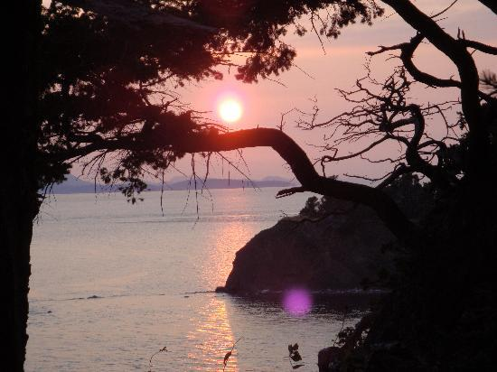 Eastsound Landmark Inn: Quiet Cove to watch the sunset