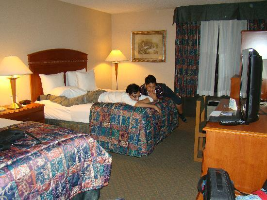 The Comfort Inn & Suites Anaheim, Disneyland Resort: Our room fit 3 adults and 1 kid