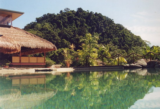 Cockatoo Hill Retreat: Infinity Pool at the lodge