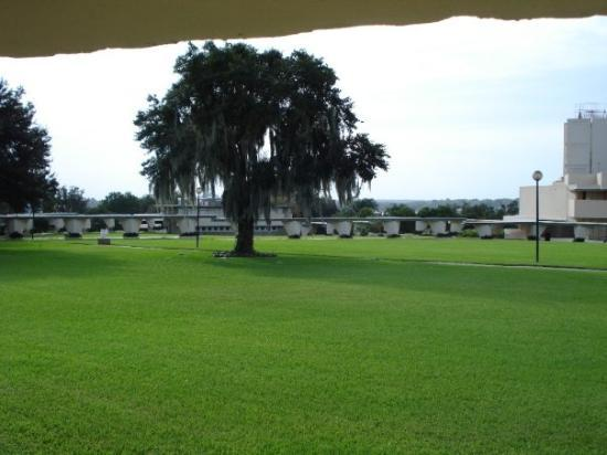 new Usonian House - Picture of Florida Southern College