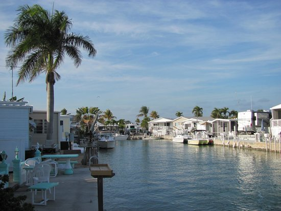 Cudjoe Key, Floride : Heated pool