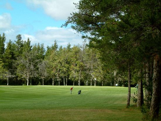 Northern Greens Resort: Nipawin Evergreen Golf Course