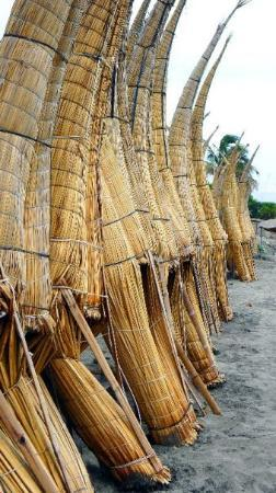 Chiclayo, Pérou : Reed rafts.