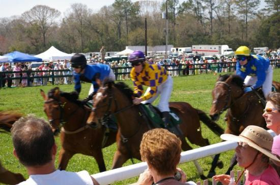 At the Steeple Chase, Aiken, SC