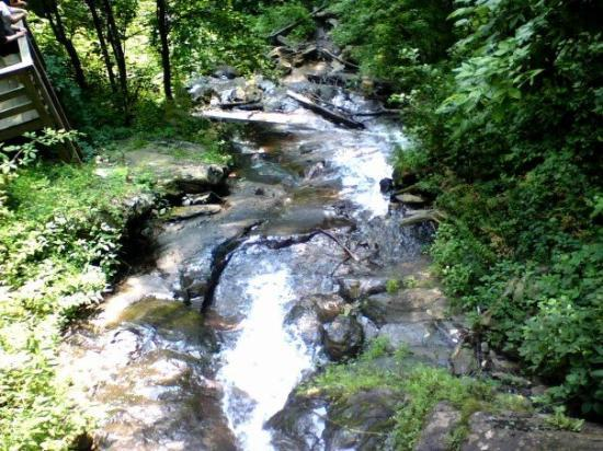 Amicalola Falls State Park: Water.