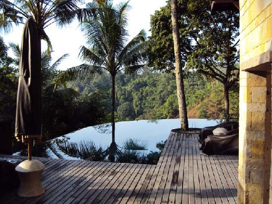 Payangan, Indonezja: my private pool