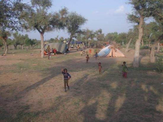 Nawalgarh, India: Kids from the tent camp outside our hotel