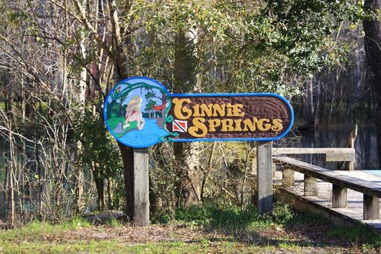 Bed And Breakfast Near Ginnie Springs In High Springs Fl