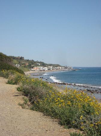 , : Malibu,CA