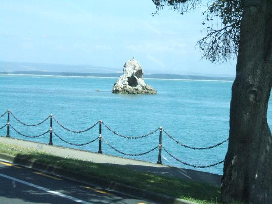 Kingsland Court Motel: Lions rock between Nelson and Tahuna