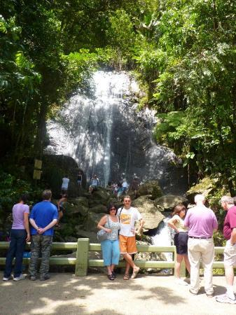 El Yunque National Forest, เปอร์โตริโก: Hiking in the Tropical Rain Forest