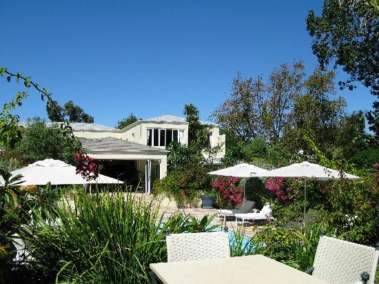 The Last Word Constantia: Pool and garden