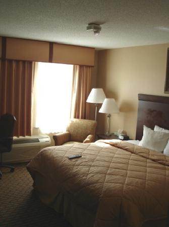 Comfort Inn & Suites: King bed