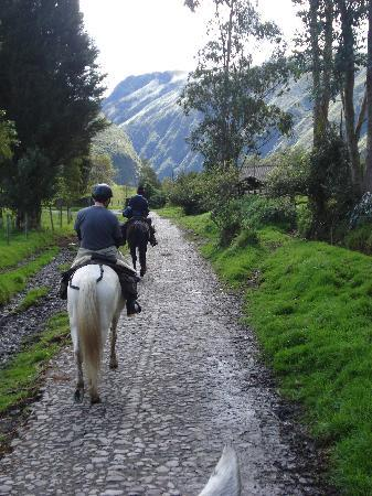 Hacienda Zuleta: Horseback riding trail