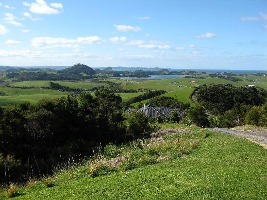 Whangarei, Nowa Zelandia: Stunning panoramic views - Poor Knights islands in the distance!