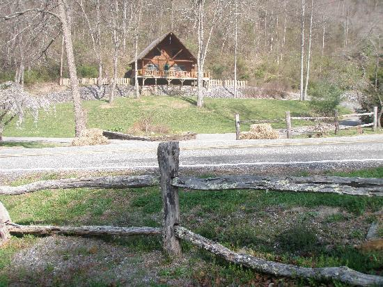 Lands Creek Log Cabins: the general 'feel' of the property is rustic