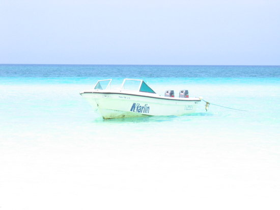Cayo Coco, Cuba: the color of the sea :wowww