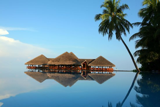Medhufushi Island Resort: pool reflection