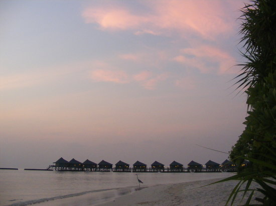 Komandoo Maldive Island Resort: sunrise