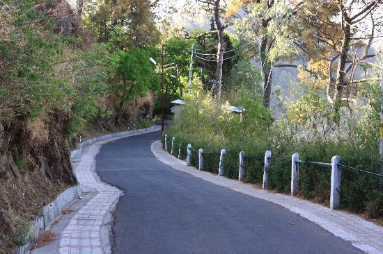 Lovers Lane Kasauli