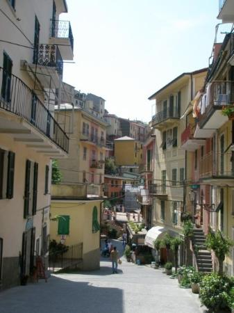 Levanto, Italy: Manarola houses, Cinque Terra