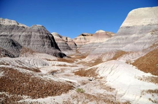 Petrified Forest Nationalpark, AZ: Blue Mesa - Petrified Forest NP (AZ)