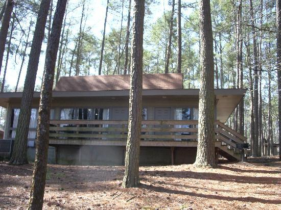 Guntersville, AL: Lake side of cabin