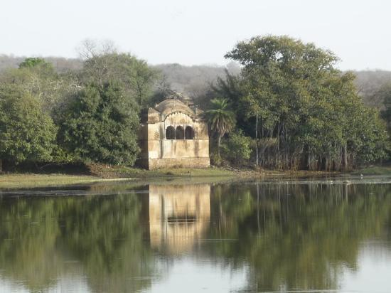 Ranthambore National Park Photo