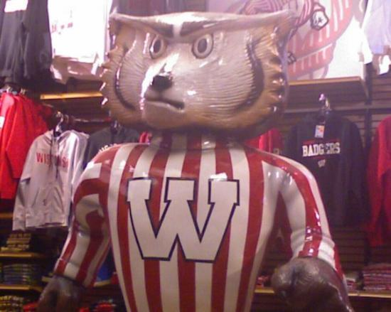 Appleton, WI: Badger