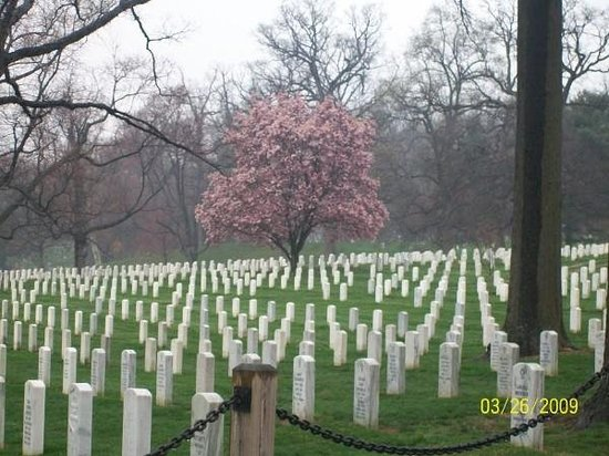 Arlington
